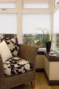 Into Blinds Pleated