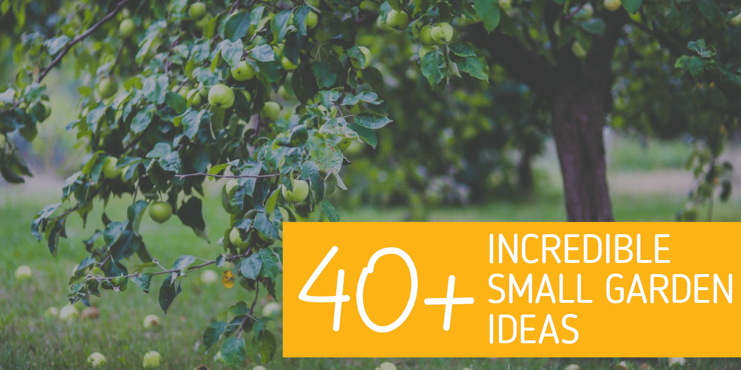 40+ Incredible Small Garden Ideas