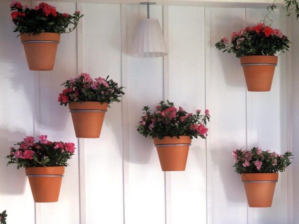 34 New Wall Flower Pots Inspiration of wall mounted flower pots